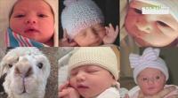 Ashton Kutcher i Mila Kunis pokazali zdjęcie swojej córki